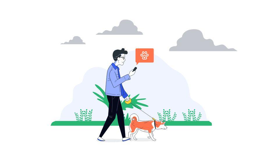 online pet care app solutions